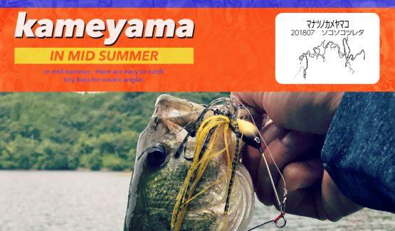 【亀山湖】真夏のカメヤマはそこそこ釣れた!9尾ゲット