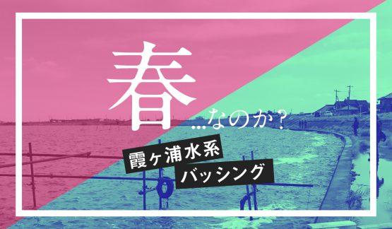 春…なのか?霞ヶ浦水系バッシング【4/2釣行】