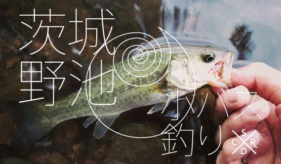 茨城野池で小バスをボコボコに!釣りたかった【6/10野池&那珂川】