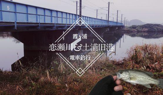 電車で恋瀬川&土浦旧港に行ってきた【11/8霞ヶ浦水系】