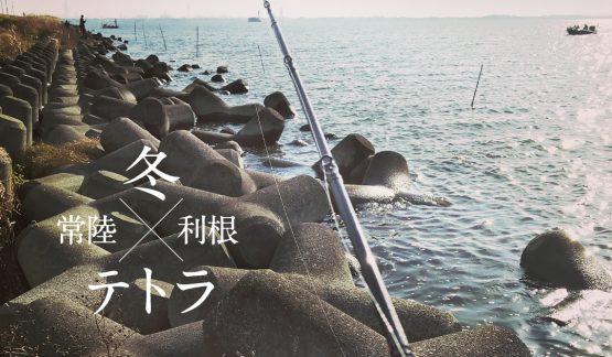 冬モードの霞ヶ浦水系テトラでバラシ【11/26】