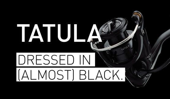 【フィッシングショー2018】ダイワの18タトゥーラ(スピニング)は真っ黒ではなかった
