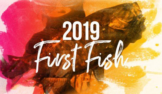 2019年初バスを多摩川で釣るまでの経緯