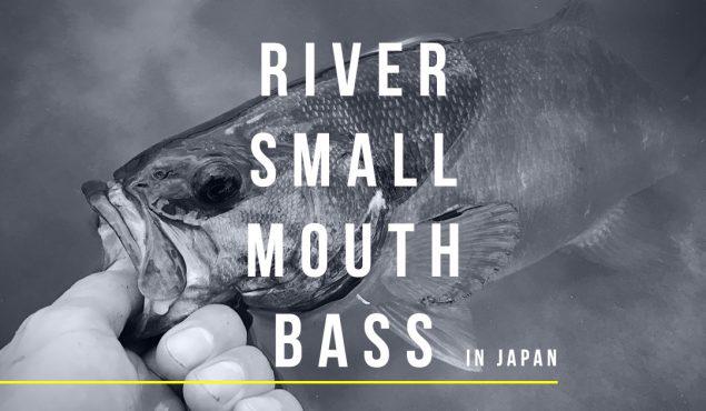 日本の川のスモールマウスバスを釣るということ