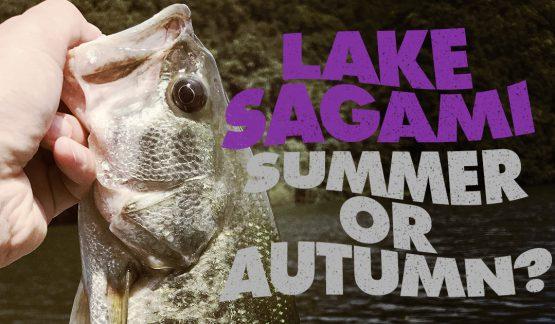 どちらかというとまだ夏らしき8月最後の相模湖【40UPゲット】